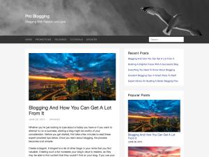Aquila WordPress Theme