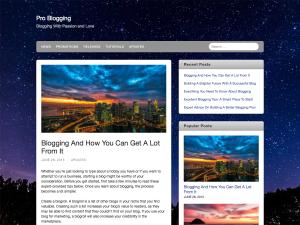 Ara WordPress Theme