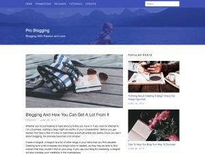 Auriga WordPress Theme