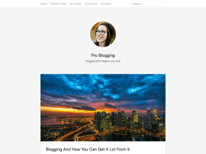 Apus WordPress Theme