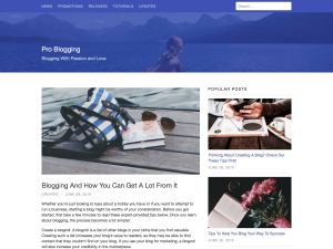 Auriga WordPress Theme