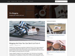 Caelum WordPress Theme